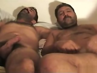 turkish hairy